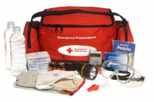 For a complete list of stuff, visit http://www.redcross.org/prepare/location/home-family/get-kit.